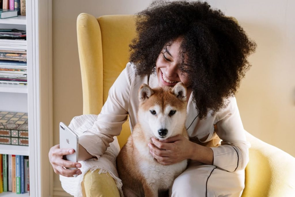 greater number of people are looking for a pet-friendly property